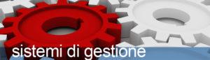 Efficacia ed influenza dei SGSL: grandi aziende a confronto